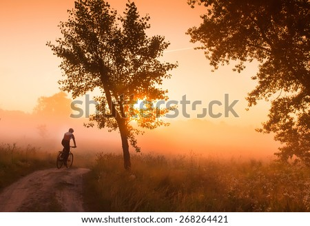 silhouette from the back of mountain biker at sunrise, traveling on a dirt track among the blossoming field and morning mist. - stock photo