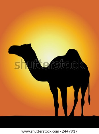 Silhouette Illustration of Camel ! - stock photo