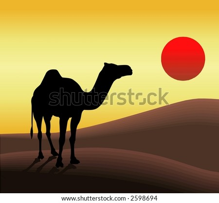 Silhouette Illustration of Camel and Sun ! - stock photo