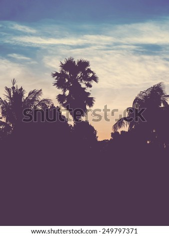 silhouette landscape of coconut and palm tree ,tropical sunset scene with vintage filter effect