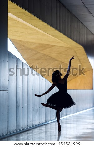 Silhouette of a ballet dancer in a beautiful pirouette pose.