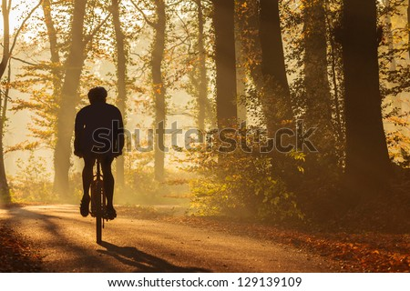 Silhouette of a biker in autumn on a sunny afternoon - stock photo