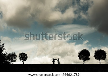 Silhouette of a bride and groom on the horizon. Trees in a row and thick clouds - stock photo