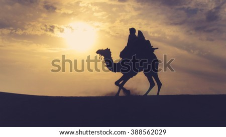 Silhouette of a Camel Rider in the desert facing the sunset.