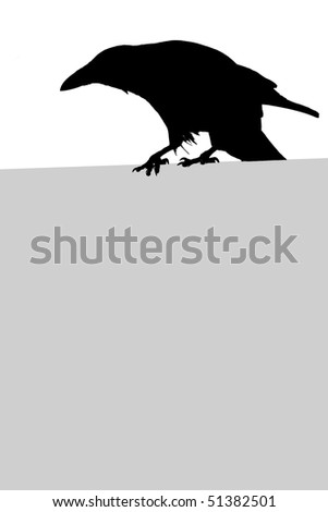 Silhouette of a crow - stock photo