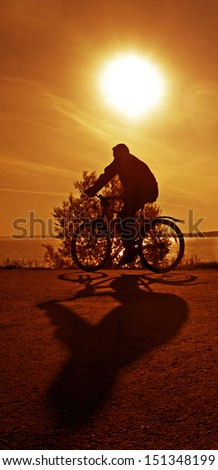 silhouette of a cyclist at  orange or yellow sunset With shadow Copy space for inscription