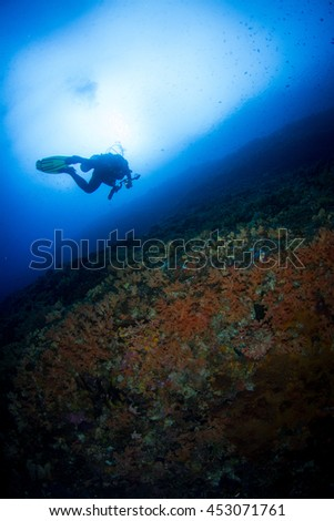 Silhouette of a diver above the coral reef of Indonesia - stock photo