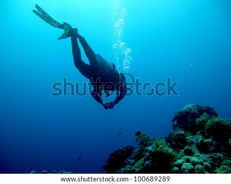 Silhouette of a diver over a coral reef