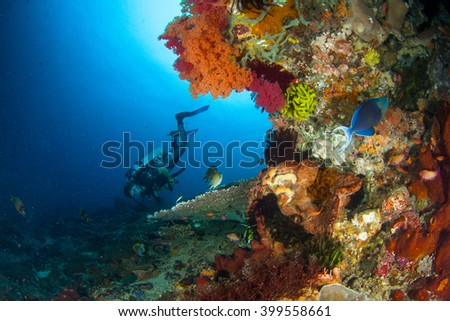 Silhouette of a diver while observing a table coral in deep water. Beautiful female diver and the healthy reef. Indonesia, Nusa Penida - stock photo