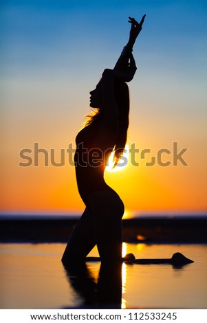 Silhouette of a fit woman on the beach at sunset - stock photo