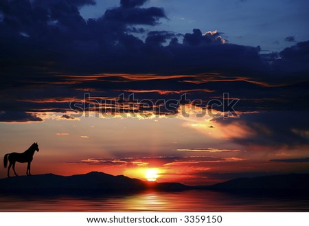 Silhouette of a horse next to a lake at either sunrise or sunset at Lake Tahoe in both Nevada and California - stock photo