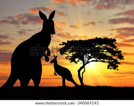 Silhouette of a kangaroo with a baby on a background of a beautiful sunset - stock photo