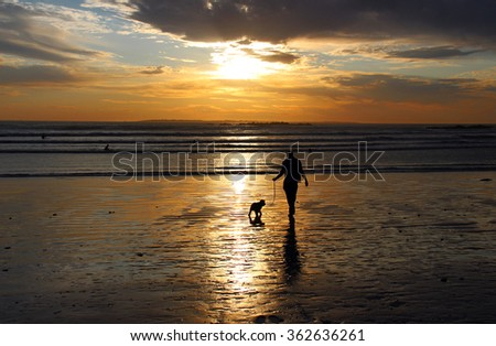 Silhouette of a man walking a dog on the beach at sunset and reflected on the wet sand