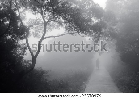 silhouette of a man walking on a pathway in a foggy forest