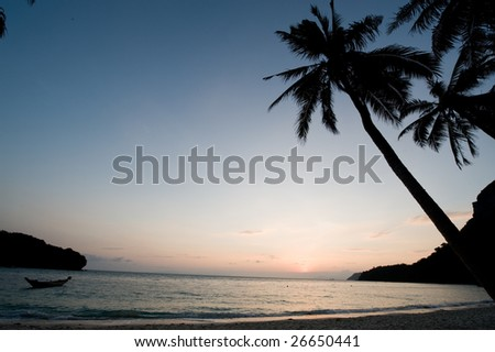 Silhouette of a palm tree overhangs into the view of a perfect sunset onto a tranquil beach - stock photo