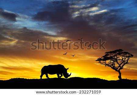 silhouette of a rhinoceros africa Hill - stock photo