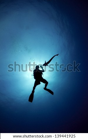 Silhouette of a scuba diver interacting with a remora / sucker fish / shark sucker with a sun burst behind them - Riviera Maya, Mexico - stock photo