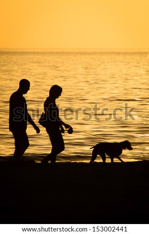 Silhouette of a walking on the beach with a dog, Fort Myers, Lee County, Florida, USA - stock photo