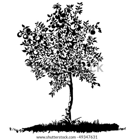 Silhouette of a young apple tree on meadow, raster version - stock photo