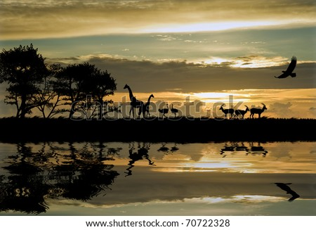 Silhouette of animals in Africa theme setting with beautiful colorful sunset - stock photo