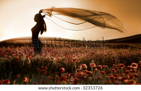 Silhouette of beautiful girl in the poppy field, artistic photo - stock photo