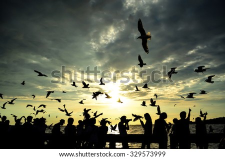 silhouette of bird and people that is wonderful moment - stock photo