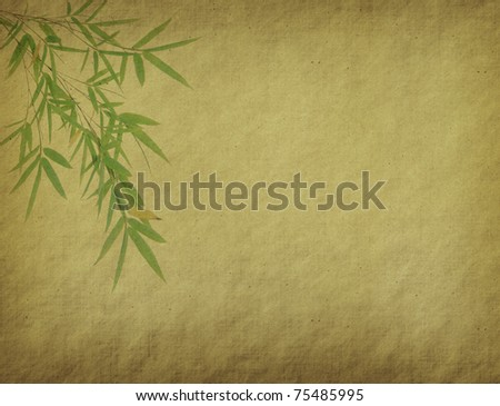 Silhouette of branches of a bamboo on paper background - stock photo