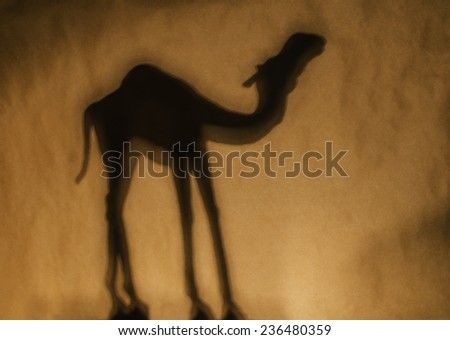 silhouette of camel dromedary against brown - stock photo