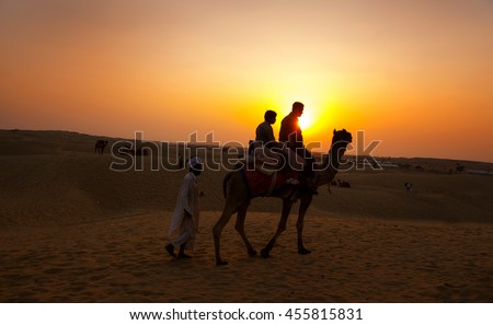 Silhouette of Camel in the Thar Desert during sunset. Thar Desert located at Jaisalmer, Rajasthan, India.