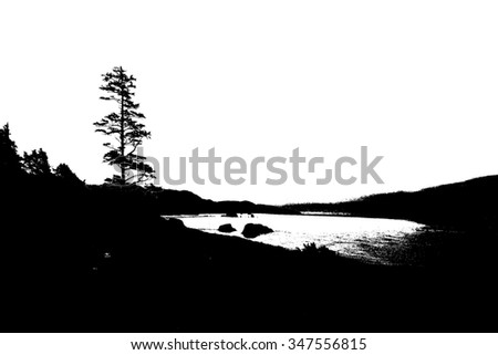 Silhouette of conifer against background of seacoast near  Cannon Beach,   Oregon Coast - stock photo
