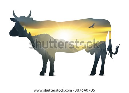 Silhouette of cow with mountains panorama. Colorful sunset in wild valley.