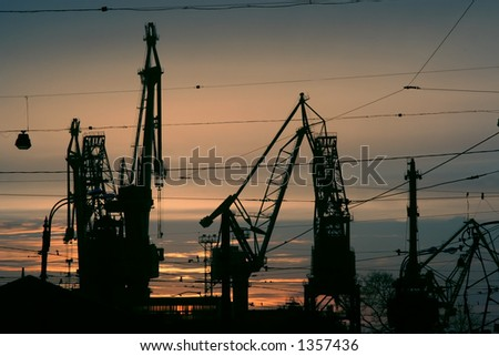 Silhouette of cranes in the sea-port