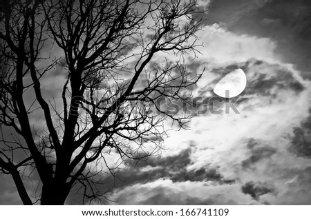 Silhouette of dead Tree against moon and clouds in a cloudy night . Processed with black and white style,can be used for background - stock photo