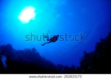 Silhouette of diver above the wall, Grand Cayman - stock photo