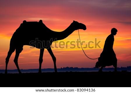 Silhouette of Egyptian Arab bedouin walking with camel at morning desert sunrise - stock photo