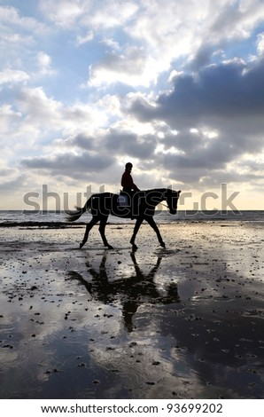 Silhouette of Female Horse Rider Walking on the Sandy Beach with Reflection of the Sky - stock photo