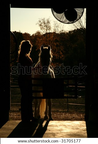 Silhouette of Girl and Horse - stock photo