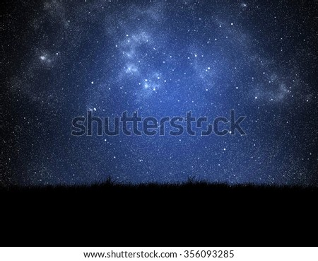 silhouette of grass on night sky background