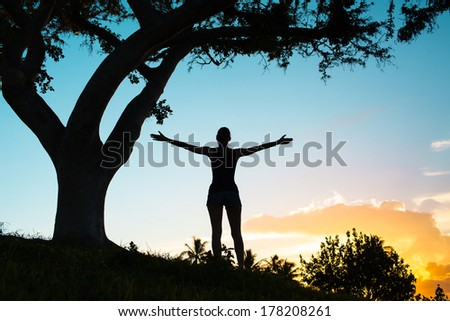 Silhouette of happy free woman enjoying nature. Freedom concept. - stock photo