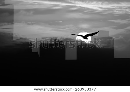 silhouette of high old building and the  eagle on sky sunset  background ,white and black  - stock photo
