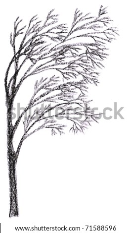 Silhouette of Loneliness Tree Charcoal Drawing for page conner - stock photo