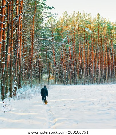 Silhouette of man with dog walking in winter forest - stock photo