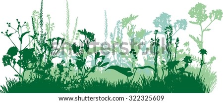 Silhouette of meadow grass