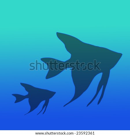 Silhouette of Mom and Baby Angel Fish in Bright Gradient Blue Green Water