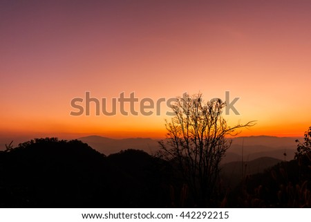 Silhouette of mountains and dry tree on colorful sky background and sunset.  - stock photo