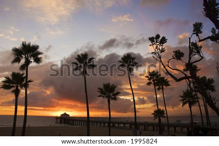 Silhouette of palm trees in a beach scene with pier extending into ocean and clouds gathering during sunset. - stock photo