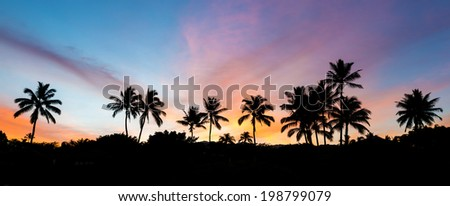 Silhouette of palm trees with a very colorful sky at sunrise from secret beach on the island of Maui, Hawaii  - stock photo