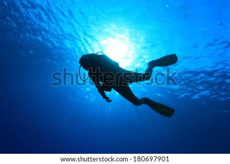 Silhouette of scuba diver and sunlight in the blue water