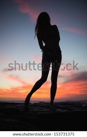 Silhouette of sexy woman posing on the beach at dusk - stock photo
