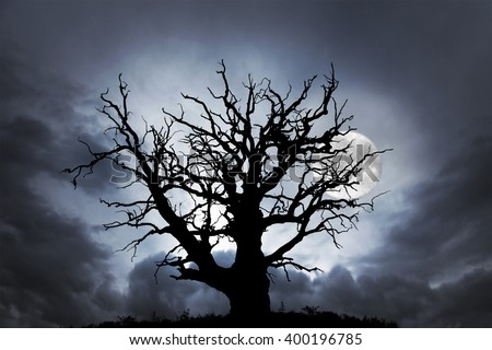 silhouette of spooky bare oak tree on dark sky with full moon - stock photo